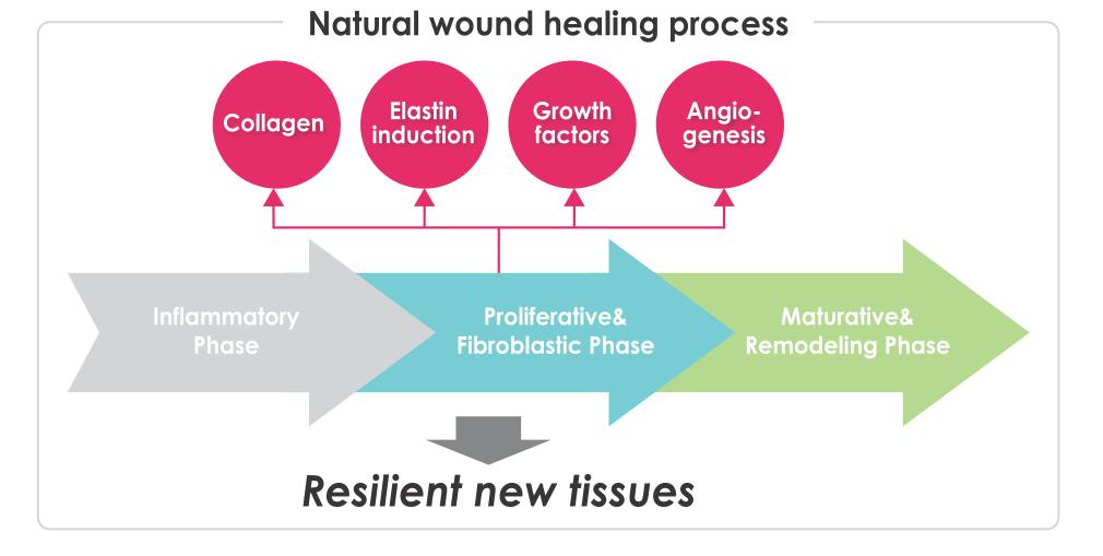 Natural Skin Healing Wound